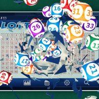 Online Bingo is a Winner