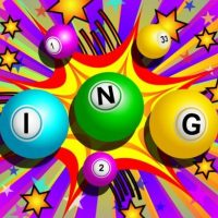 The Regulations and License of Bingo